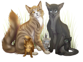 Leafpool X Crowfeather by WoofyDragoncat68