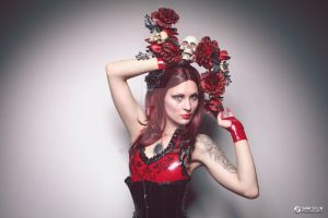 Rose Red by Vertina