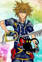 Hero of the Keyblade by Clampthefairy