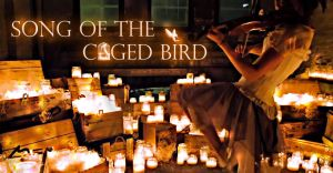 Lindsey Stirling_Song of the caged bird by juztkiwi