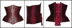 Jaspenelle's Corset by GrayWolfCorsets