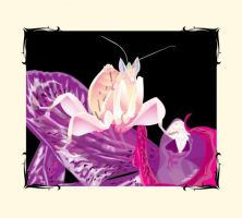 Orchid Mantis by pinapplepony