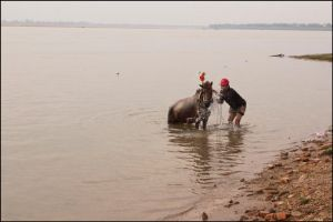 Mekong River horse and cart workers 6 by watto58