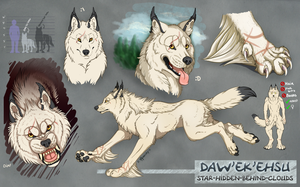 Daw'ek'ehsu Ref Sheet by cloudstar-wolf