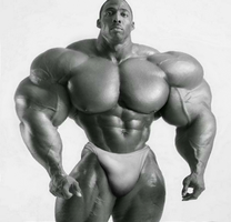 Complete package by UnitedbigMuscle