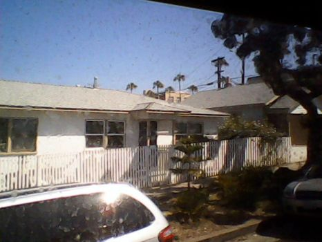 Bungalows Behind The Dolphin Hotel by dkenreeks