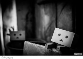 Danbo by Thanutpat