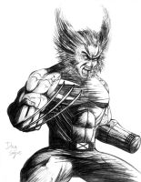Wolverine  Weapon X Age of Apocalypse by DougSQ