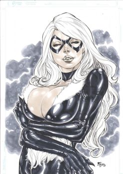 Black Cat by Fredbenes