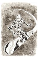 The Silver Surfer by MikeOppArt