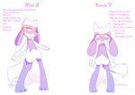 Male + Female Riolu Tami's Style by NemiruTami