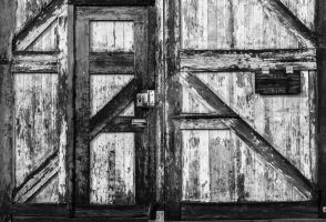 Shed Door BW by perm2069