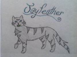 Jayfeather for AmsilHobbes by Karmacutie