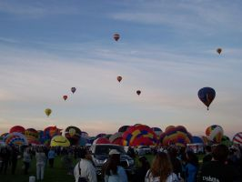 A Bevy of Balloons: Ballloon Fiesta 2011 by katerirose