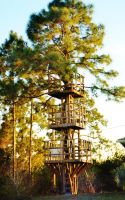 Our Treehouse Built by My Husband {Photo 6} by Empress-XZarrethTKon
