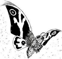rainbow mothra godzilla coloring pages coloring pages