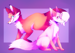 Foxes by captyns