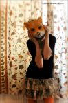 The fox project by Holunder