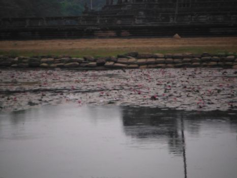 Angkor What Pond by Fireweasel39