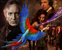 Alan Rickman - wallpaper 11 by transparentbird