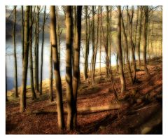 derwent 4 by mzkate
