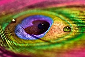 Eye of The Rainbow by Naphartiri