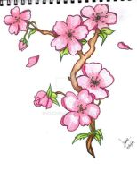sakura flower drawing... by sumiko90
