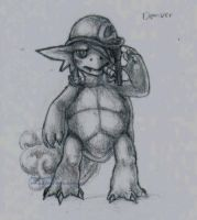 denver the wartortle