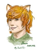 Fox Lee Joon by SakuTori