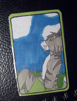 Art Trading Card: Siglo by anne-t-cats