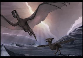 Watching her fly by DoruDrutt
