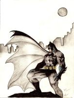 The Dark Knight by rocknro8907