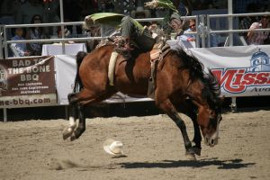 rodeo 1 by xbr0kendevotion