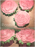 Rose Cupcakes by IzzysCupcakes