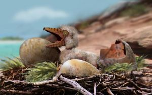 Pterosaur young in the nest by A2812