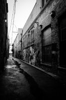 Alley - 1 by sarah-wells