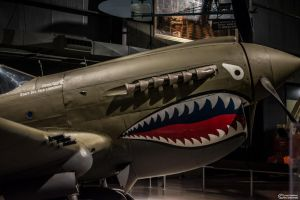 P40 Detail by spaxspore