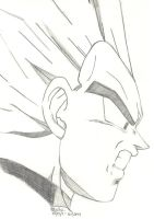 Dragon Ball Z - Vegeta Sketch by SlotheriuS