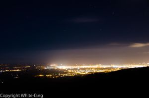 Christchurch by white-fang