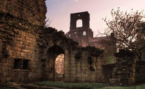 Kirkstall Abbey by auric