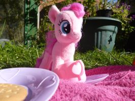Pinkie Pie Let's Have a Picnic by Candyfloss-Unicorn