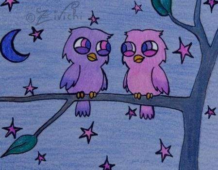 Owls in the night by Zivichi