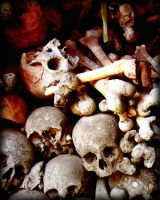 Wall of Skulls - detail by MD-Arts
