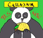 Callajam Facebook Profile Picture by edwpumpkinking