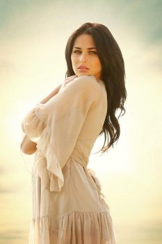 beauty in the evening light by gestiefeltekatze