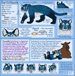 Commish: Switchback Ref by BecSparrow