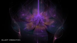 Fractal Flower by ecr8on