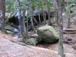 Mossy boulder in a forest by AnyaAllyn