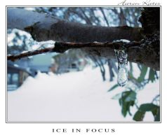 Ice in Focus by Storm-Boy
