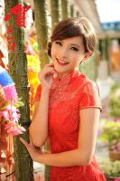 In cheongsam 37 by Agnes108